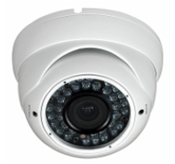 Eco-Series POE IP Camera(201EV2)